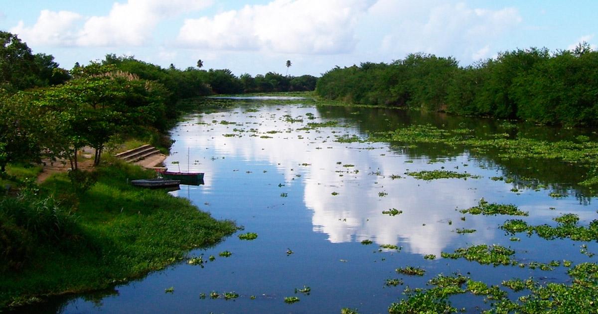 rio toa